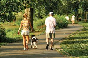 Casal feliz passeando com um cachorro